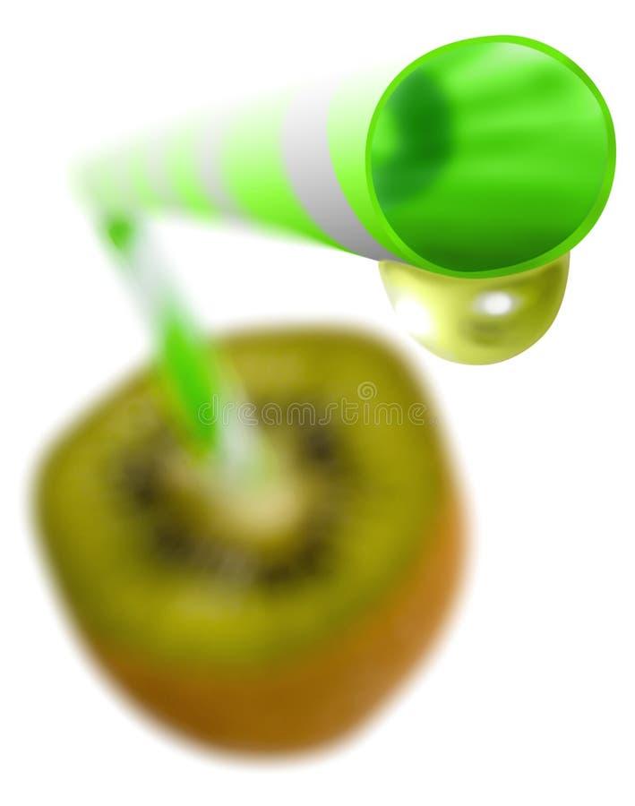 φρέσκο ακτινίδιο φυσικό στοκ φωτογραφία με δικαίωμα ελεύθερης χρήσης