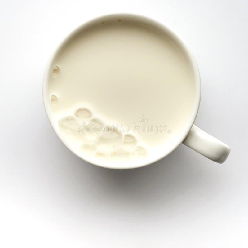 Φρέσκο γάλα στο φλυτζάνι στοκ εικόνες με δικαίωμα ελεύθερης χρήσης