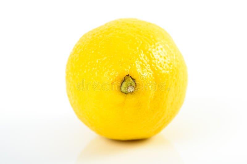 φρέσκο λεμόνι - κίτρινο στοκ φωτογραφίες