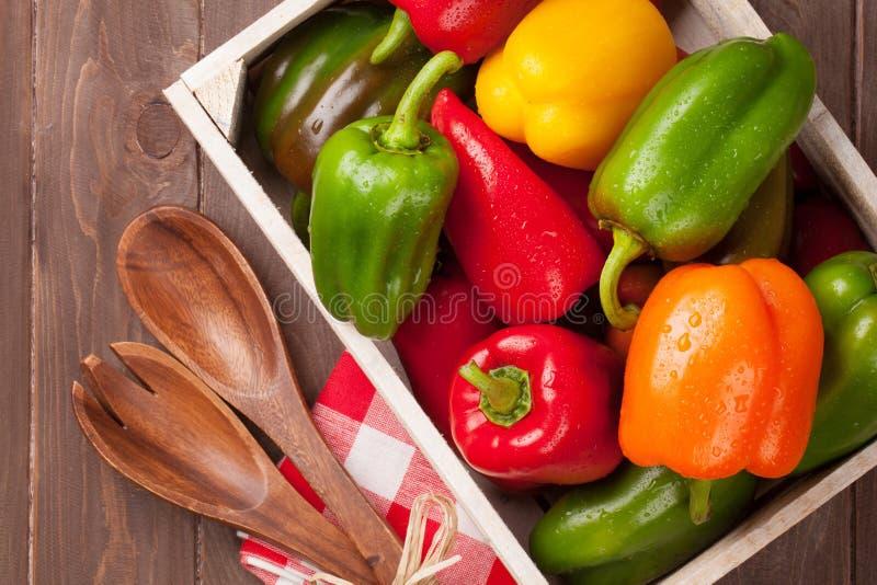 Φρέσκο ζωηρόχρωμο πιπέρι κουδουνιών στοκ φωτογραφία με δικαίωμα ελεύθερης χρήσης