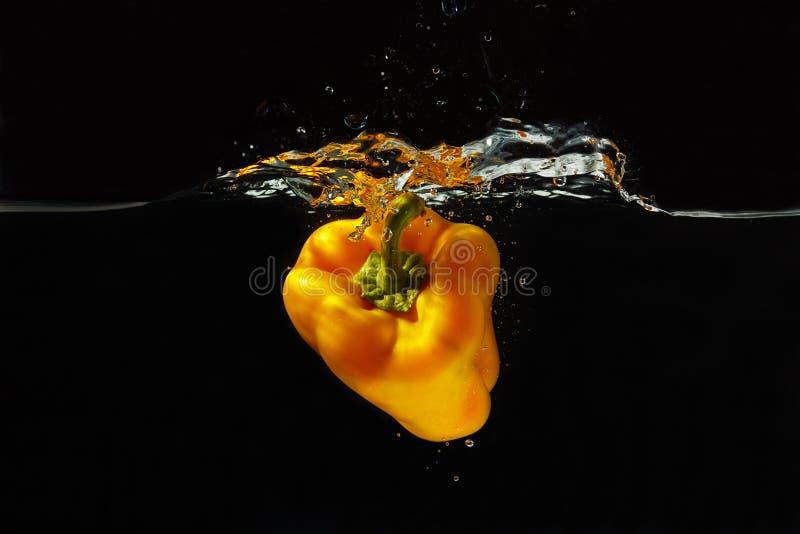 Φρέσκο κίτρινο πιπέρι που περιέρχεται στο ύδωρ στοκ εικόνες