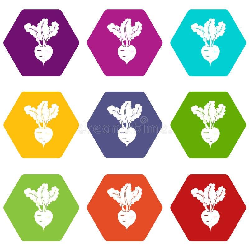 Φρέσκο καθορισμένο χρώμα εικονιδίων παντζαριών hexahedron απεικόνιση αποθεμάτων