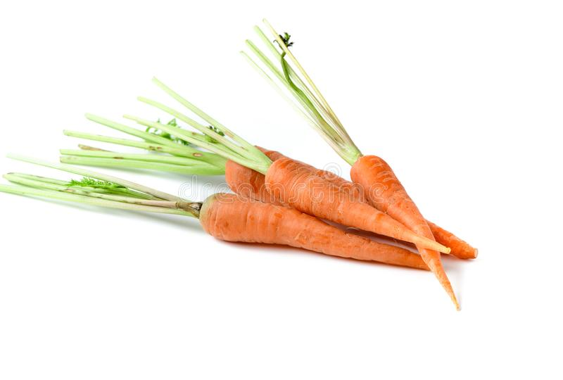 Φρέσκο καρότο, καρότο μωρών στο λευκό στοκ φωτογραφία με δικαίωμα ελεύθερης χρήσης