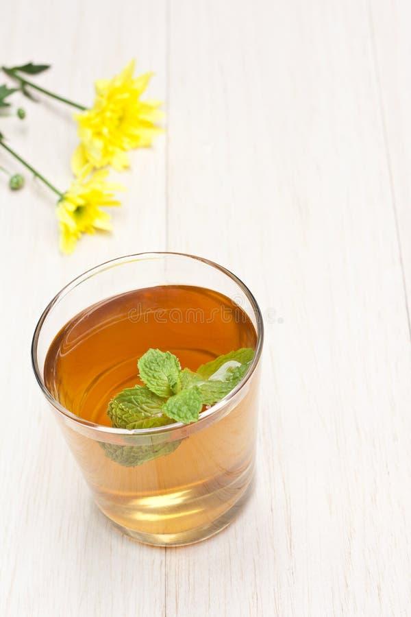 φρέσκο καυτό τσάι μεντών φύλ&la στοκ φωτογραφίες