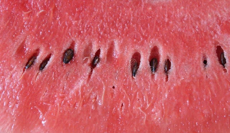 Φρέσκο, κόκκινο νερό-melone στοκ εικόνα με δικαίωμα ελεύθερης χρήσης