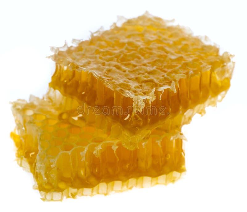 Φρέσκο μέλι στην κηρήθρα στοκ φωτογραφία