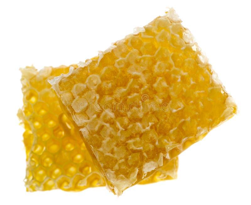 Φρέσκο μέλι στην κηρήθρα στοκ εικόνες με δικαίωμα ελεύθερης χρήσης