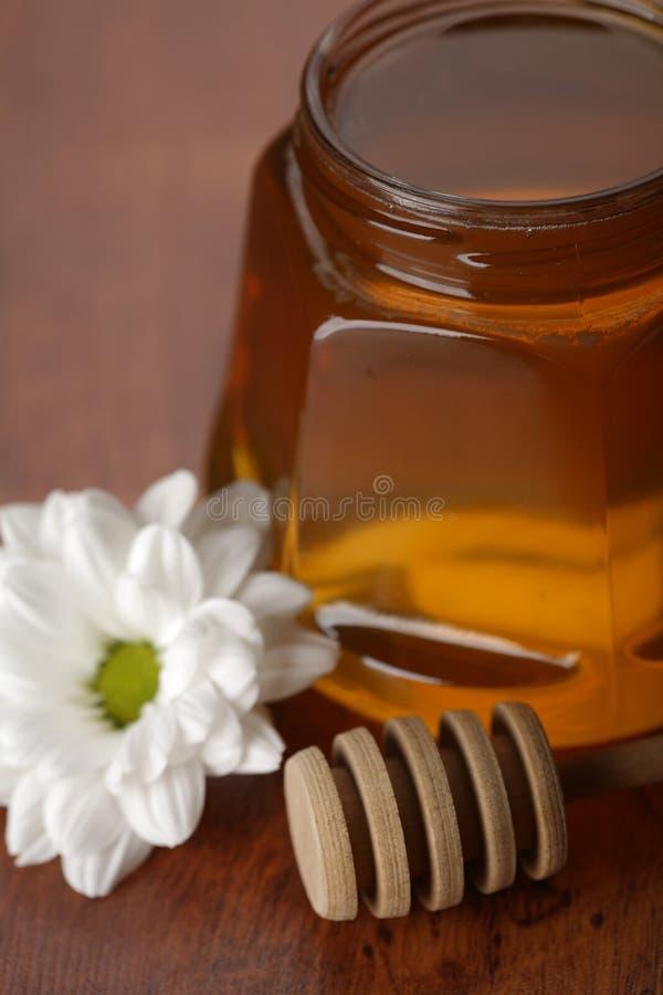 φρέσκο μέλι στοκ εικόνες με δικαίωμα ελεύθερης χρήσης