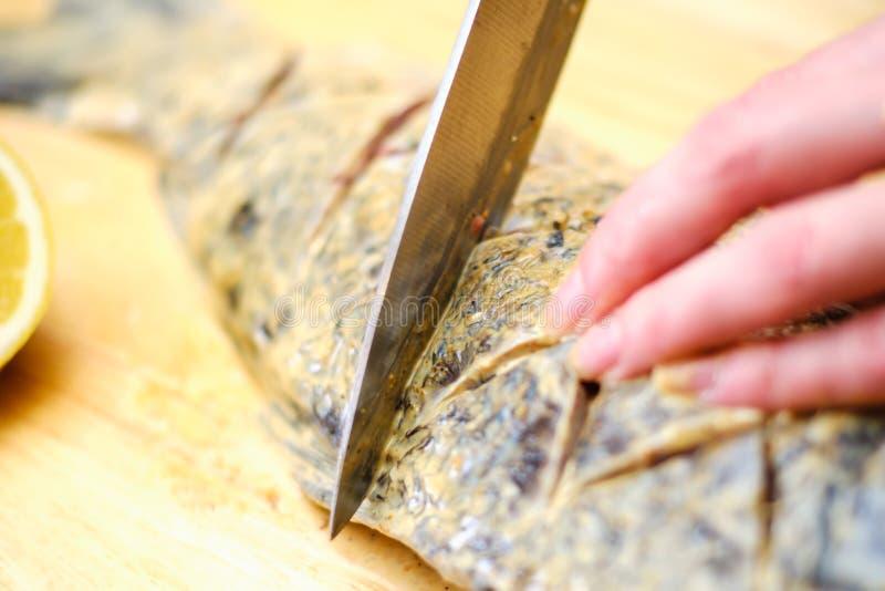 Φρέσκο μαγείρεμα τροφίμων κυπρίνων ψαριών φρεσκάδα στοκ φωτογραφίες