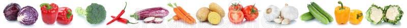 Φρέσκο πιπέρι κουδουνιών ντοματών καρότων λαχανικών που απομονώνεται σε μια σειρά στοκ εικόνες
