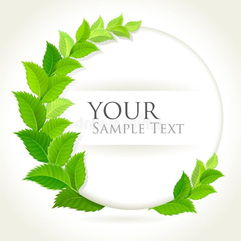 Φρέσκο πράσινο διακοσμητικό υπόβαθρο διανυσματική απεικόνιση