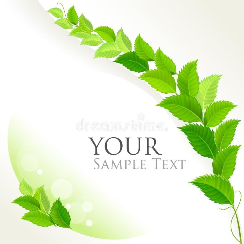 Φρέσκο πράσινο διακοσμητικό υπόβαθρο ελεύθερη απεικόνιση δικαιώματος