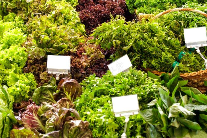 Φρέσκο πράσινο και κόκκινο κατσαρό λάχανο με τα λαχανικά variuos στοκ φωτογραφία με δικαίωμα ελεύθερης χρήσης