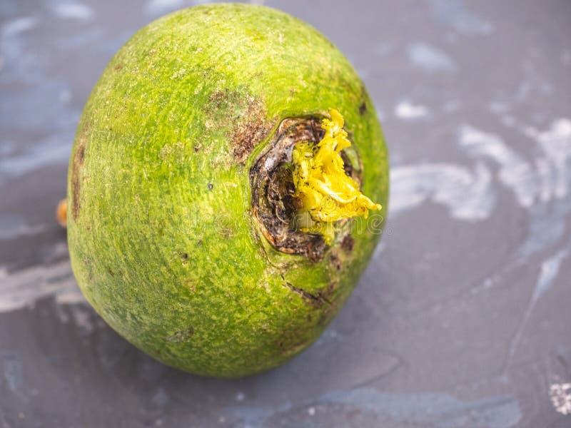 Φρέσκο πράσινο ραδίκι σε ένα γκρίζο επισημασμένο υπόβαθρο στοκ φωτογραφία με δικαίωμα ελεύθερης χρήσης