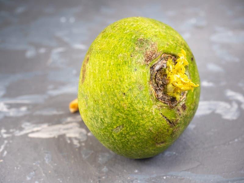 Φρέσκο πράσινο ραδίκι σε ένα γκρίζο επισημασμένο υπόβαθρο στοκ εικόνες με δικαίωμα ελεύθερης χρήσης
