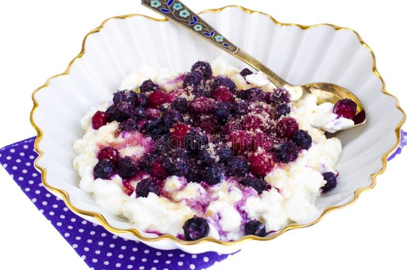 Φρέσκο σπιτικό τυρί εξοχικών σπιτιών με τα μούρα και ζάχαρη για το μωρό και τα τρόφιμα διατροφής στοκ εικόνες