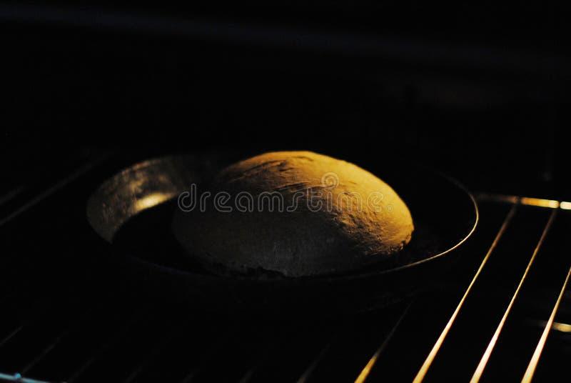 Φρέσκο σπιτικό ψωμί στο φούρνο στοκ εικόνες με δικαίωμα ελεύθερης χρήσης