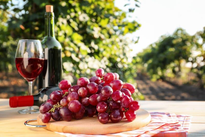 Φρέσκο σταφύλι με τα μπουκάλια και το ποτήρι του κόκκινου κρασιού στον ξύλινο πίνακα στον αμπελώνα στοκ φωτογραφία με δικαίωμα ελεύθερης χρήσης