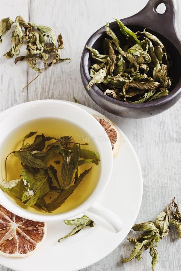 Φρέσκο τσάι από τα φύλλα της μέντας στοκ φωτογραφία με δικαίωμα ελεύθερης χρήσης