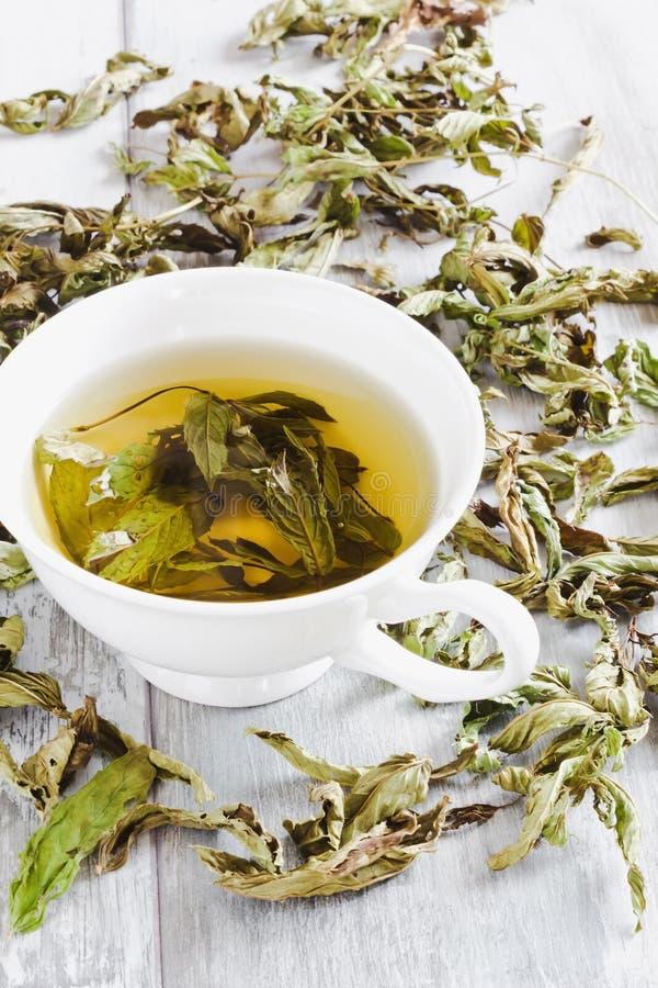 φρέσκο τσάι φλυτζανιών στοκ φωτογραφίες