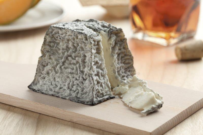 Φρέσκο τυρί Valencay στοκ φωτογραφία με δικαίωμα ελεύθερης χρήσης