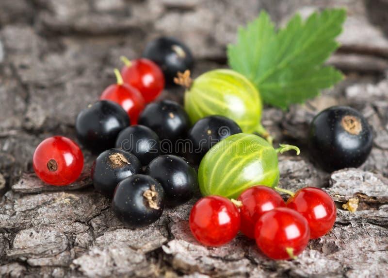 Φρέσκο υπόβαθρο φρούτων μούρων στοκ φωτογραφίες