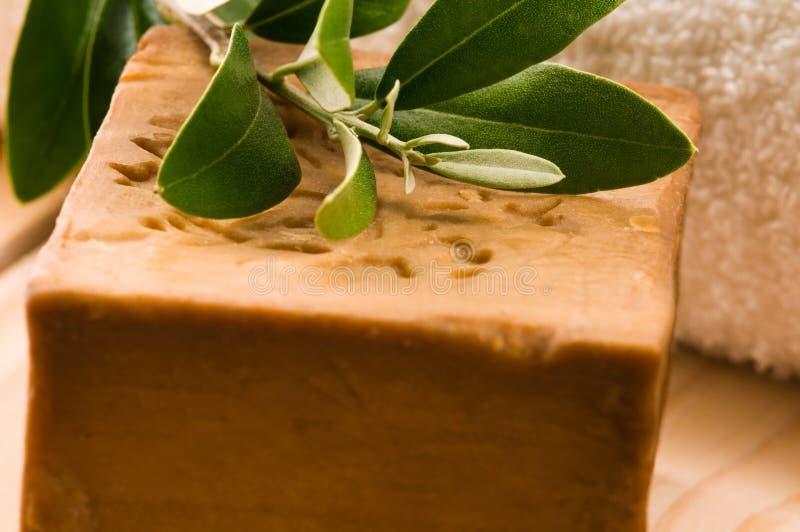 φρέσκο φυσικό σαπούνι ελ&io στοκ φωτογραφίες