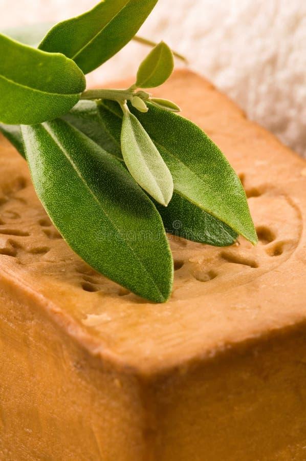 φρέσκο φυσικό σαπούνι ελ&io στοκ φωτογραφία