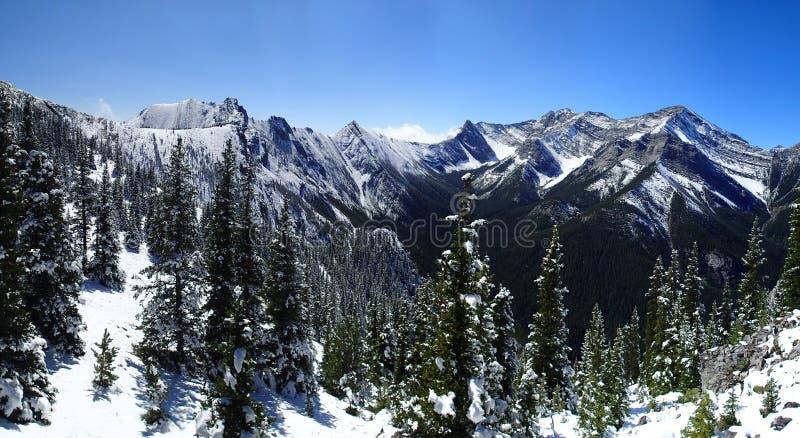 φρέσκο χιόνι βουνών στοκ φωτογραφία με δικαίωμα ελεύθερης χρήσης