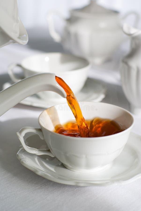 φρέσκο χύνοντας τσάι στοκ φωτογραφία με δικαίωμα ελεύθερης χρήσης