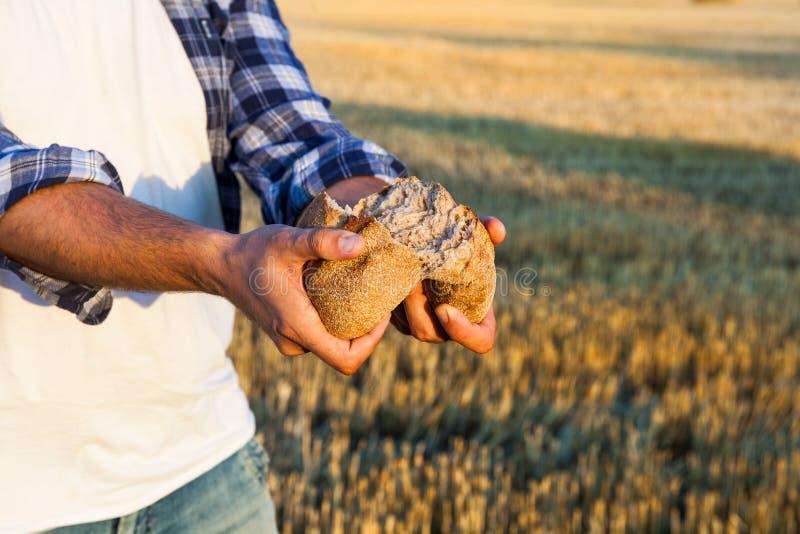 Φρέσκο ψημένο παραδοσιακό ψωμί σε ετοιμότητα ανθρώπινα στοκ εικόνες