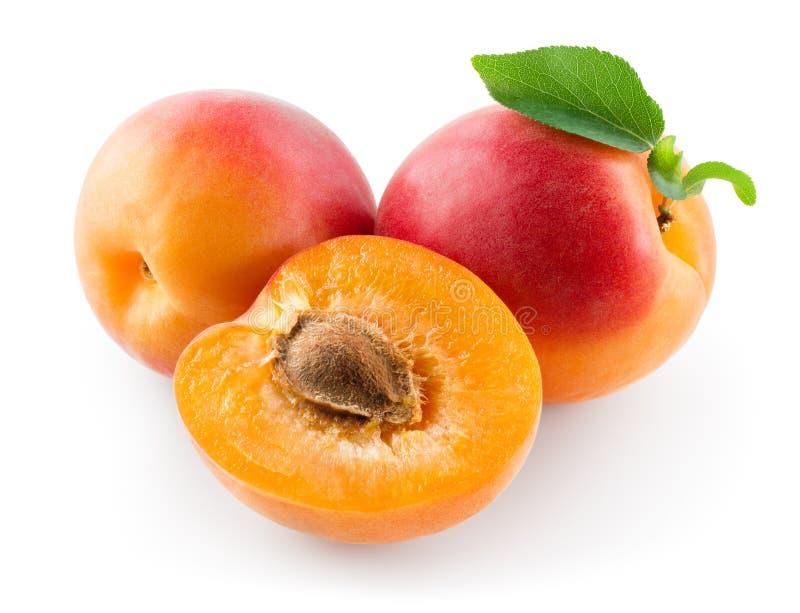Φρέσκο ώριμο βερίκοκο και ένα μισό Φρούτα με το φύλλο που απομονώνεται στο άσπρο υπόβαθρο στοκ εικόνες
