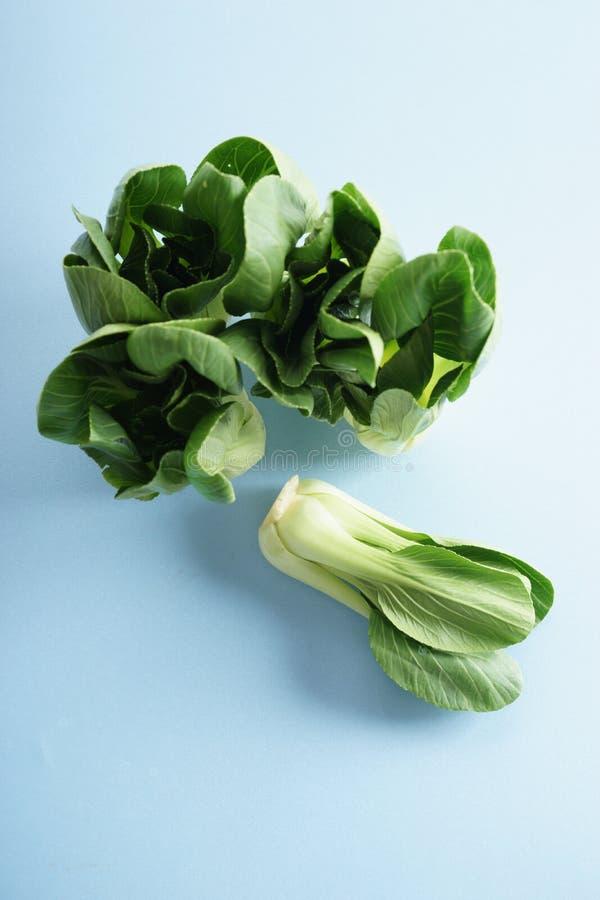 Φρέσκο choi Pak, ασιατικό λάχανο στοκ εικόνες