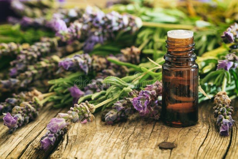 Φρέσκο lavender και ουσιαστικό έλαιο στο ξύλινο υπόβαθρο στοκ φωτογραφίες με δικαίωμα ελεύθερης χρήσης