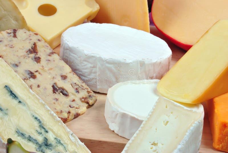 φρέσκο platter τυριών μερικοί στοκ εικόνα με δικαίωμα ελεύθερης χρήσης