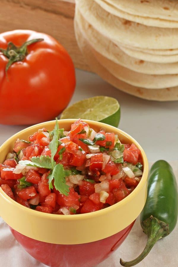 φρέσκο salsa στοκ φωτογραφίες