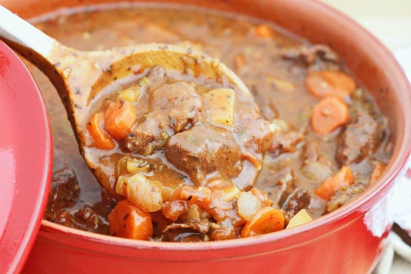 φρέσκο stew venison στοκ εικόνα