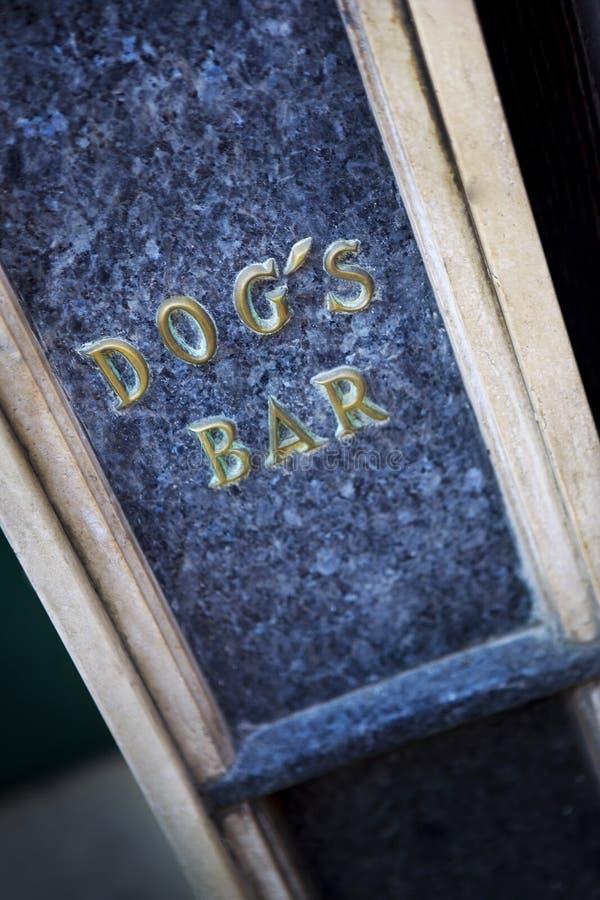 Φραγμός σκυλιού στην πόλη στοκ φωτογραφίες με δικαίωμα ελεύθερης χρήσης