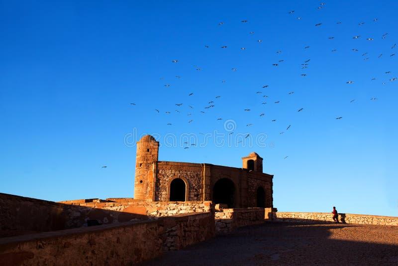 Φρούριο Essaouira, Μαρόκο στοκ φωτογραφία με δικαίωμα ελεύθερης χρήσης
