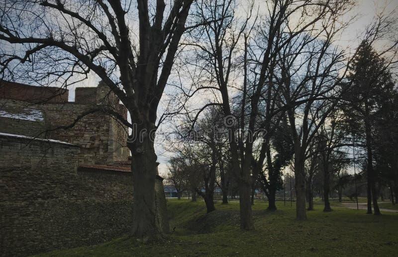 Φρούριο Vida μπαμπάδων, Vidin, Βουλγαρία στοκ εικόνες
