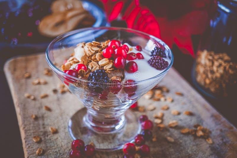 Φρούτα, βρώμη και καρύδι Granola με το γιαούρτι και τα σμέουρα στοκ εικόνες με δικαίωμα ελεύθερης χρήσης