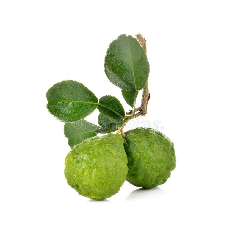 Φρούτα κίτρων στο άσπρο υπόβαθρο στοκ φωτογραφία με δικαίωμα ελεύθερης χρήσης