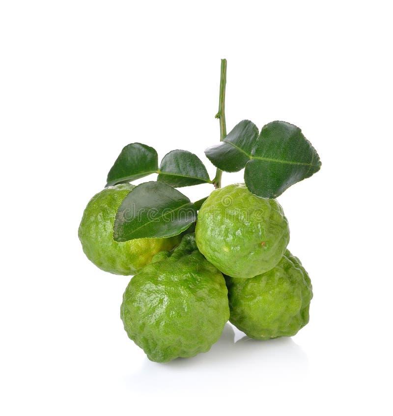 Φρούτα κίτρων στο άσπρο υπόβαθρο στοκ εικόνες με δικαίωμα ελεύθερης χρήσης