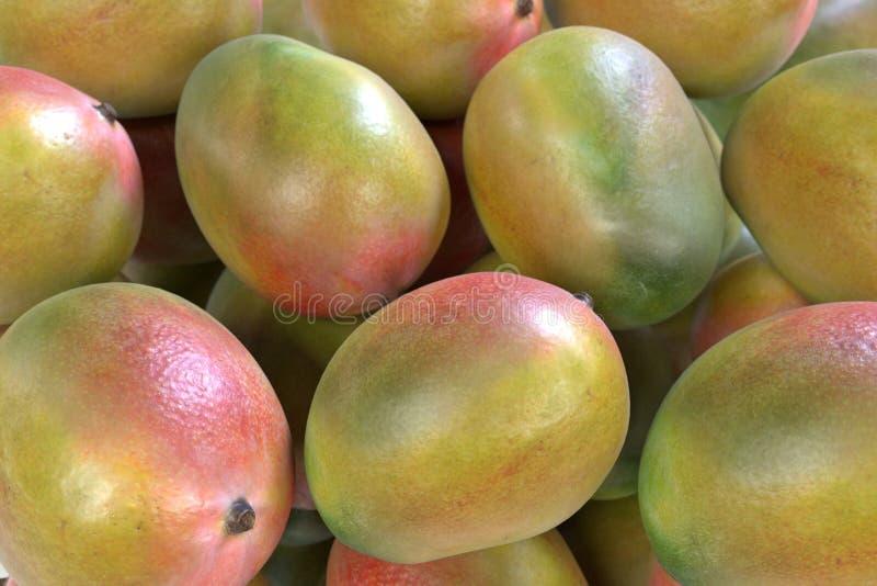 Φρούτα μάγκο ελεύθερη απεικόνιση δικαιώματος