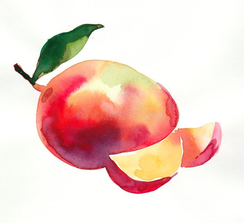 Φρούτα μάγκο Watercolor απεικόνιση αποθεμάτων