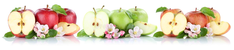 Φρούτα μήλων φρούτων της Apple σε μια φέτα σειρών που απομονώνεται κατά το ήμισυ στο λευκό απεικόνιση αποθεμάτων