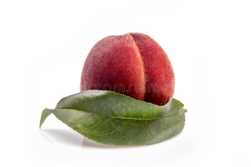 φρούτα ροδάκινων με το πράσινο φύλλο που απομονώνεται στο άσπρο υπόβαθρο στοκ εικόνα με δικαίωμα ελεύθερης χρήσης