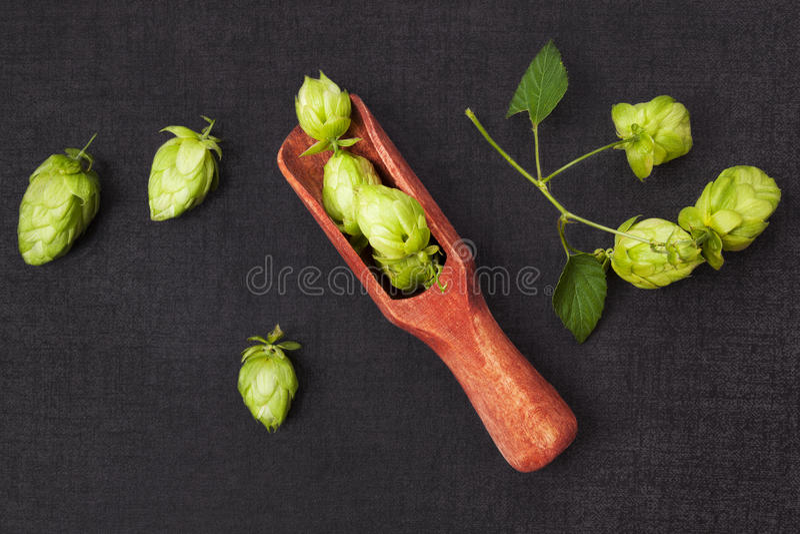 Φρούτα λυκίσκου στο κουτάλι στο σκοτεινό υπόβαθρο στοκ εικόνες