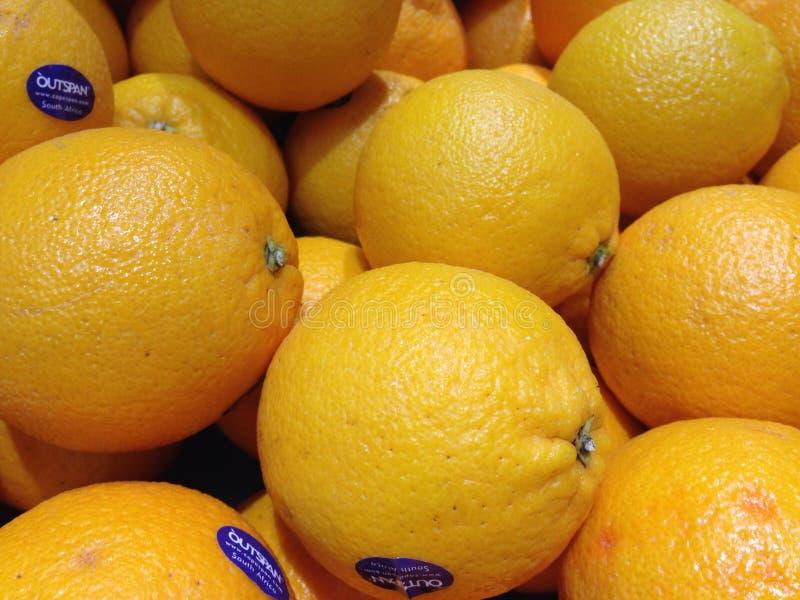 Φρούτα στοκ εικόνα με δικαίωμα ελεύθερης χρήσης