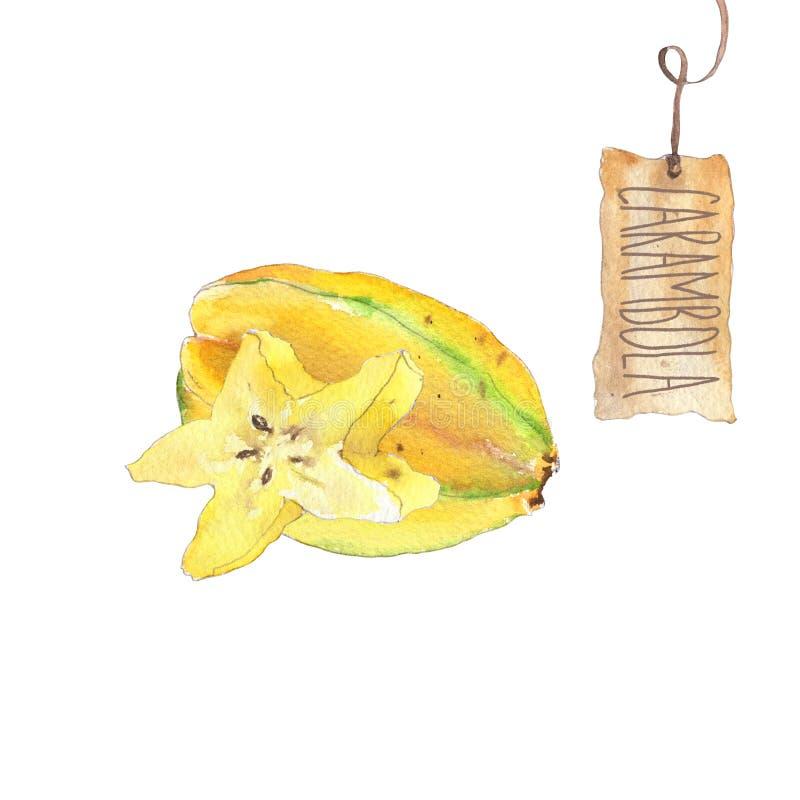 Φρούτα Carambola με τη φέτα διανυσματική απεικόνιση